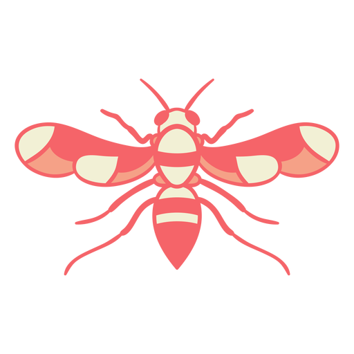 Red wasp wings open Transparent PNG