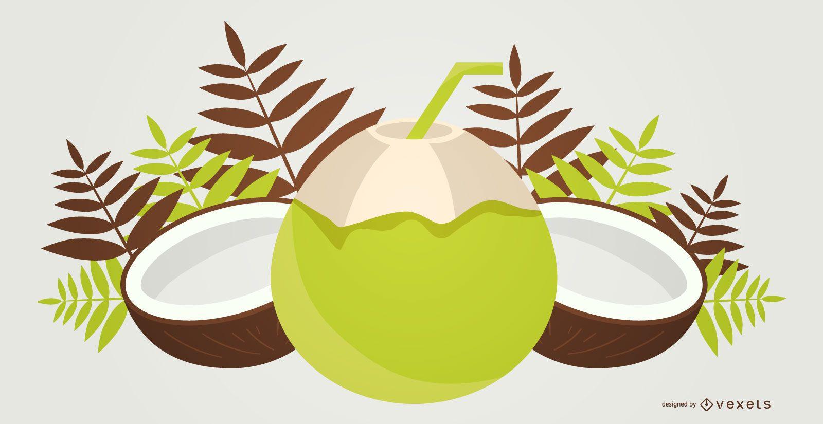 Green coconut illustration