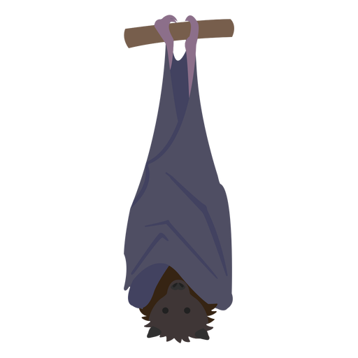 Animal plano murciélago Transparent PNG