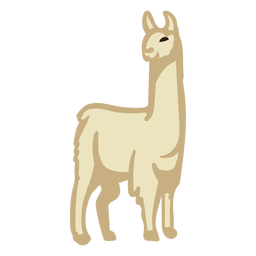 Flat llama standing