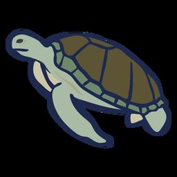 Tartaruga plana nadando