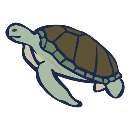 Flat turtle swimming Transparent PNG