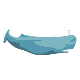 Flat whale swimming