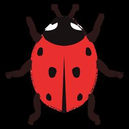 Imagen de Ladybug plana