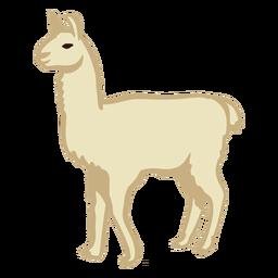 Lama Tier steht