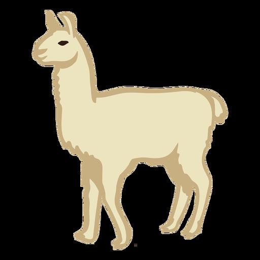 Llama animal stands