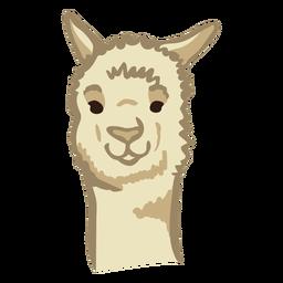 Lama süßes Gesicht