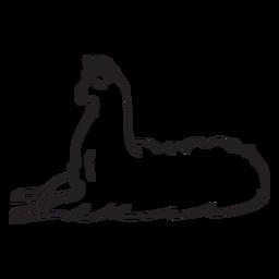 Llama sleeps stroke