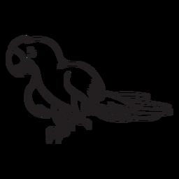 Papagei Charakter