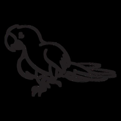 Parrot character Transparent PNG