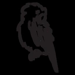 Papagei Zeichenstrich