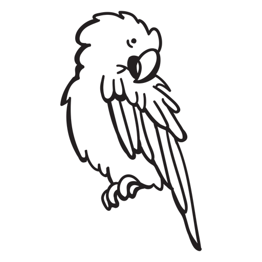 Parrot character stroke Transparent PNG
