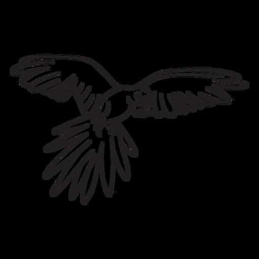 Personagem de traço de papagaio Transparent PNG