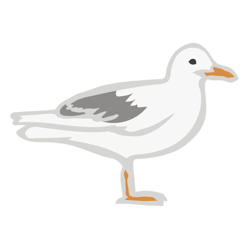 Seagull bird flat animal Transparent PNG