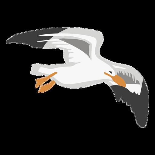 Animal de color gaviota Transparent PNG