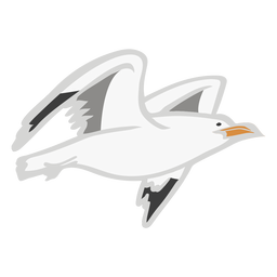 Gaviota volando plana