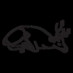 Golpe de ciervo durmiendo