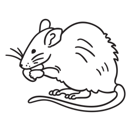 Stroke mouse eating