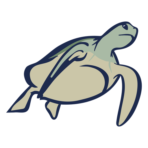 Tartaruga nadando plana Transparent PNG