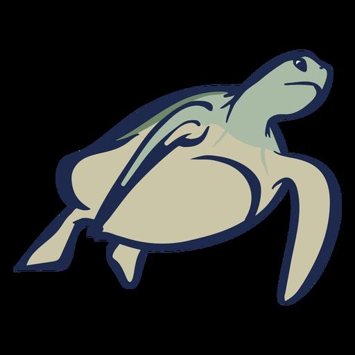 Turtle swimming flat Transparent PNG