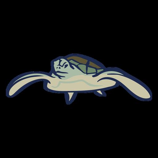 Tartaruga nada animal plana Transparent PNG