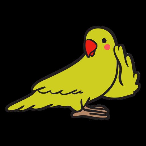 Cute green parrot listening
