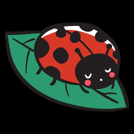Cute ladybug resting leaf