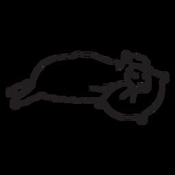 Lhama bonito dormindo contorno