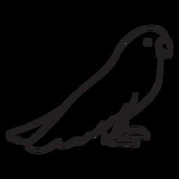 Contorno de perfil em pé papagaio bonito