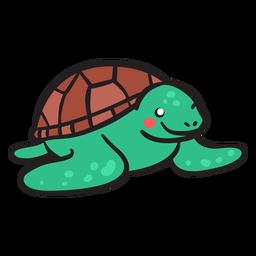 Tartaruga verde sorrindo vista frontal