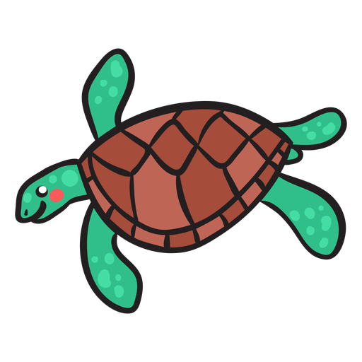 Green sea turtle swimming Transparent PNG