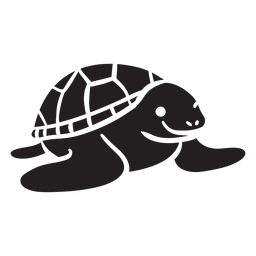 Tartaruga marinha sorrindo vista frontal