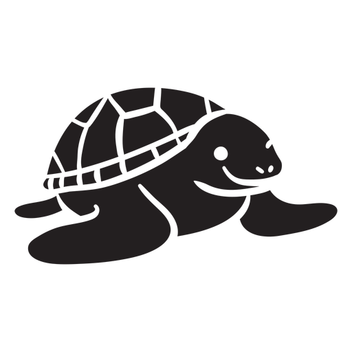 Sea turtle smiling front view Transparent PNG