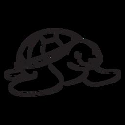Tortuga marina sonriendo contorno