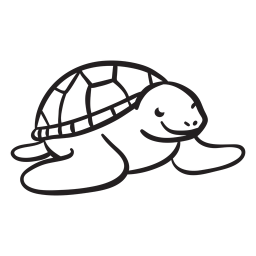 Sea turtle smiling outline Transparent PNG