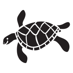 Natación de tortugas marinas