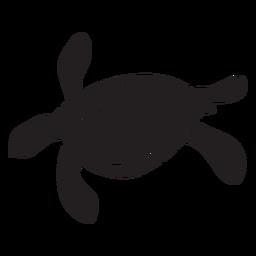 Tartaruga marinha, natação