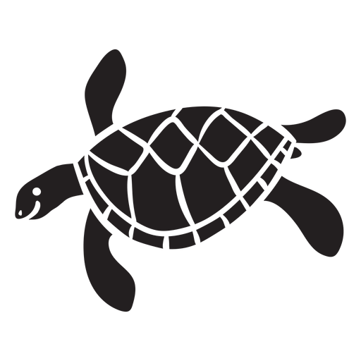 Sea turtle swimming  Transparent PNG