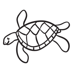 Sea turtle swimming outline