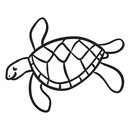 Sea turtle swimming outline Transparent PNG
