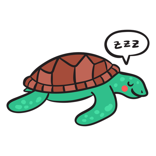 Sleeping green sea turtle Transparent PNG