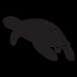 Sonriendo tortuga marina nadando