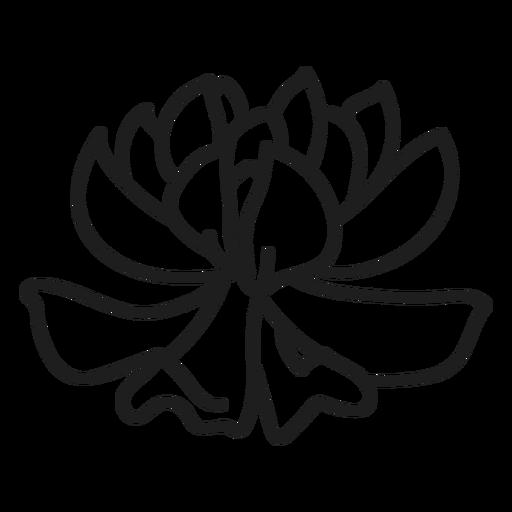 Gorgeous succulent illustration Transparent PNG