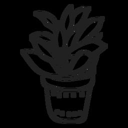 Kalanchoe Pflanze saftig