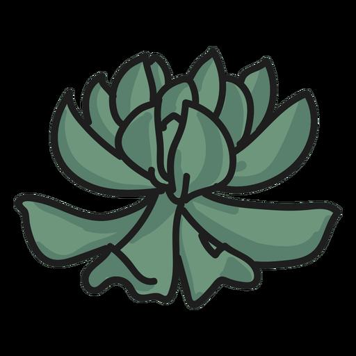Planta doodle ilustración suculenta