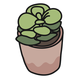 Plant succulent stroke illustration