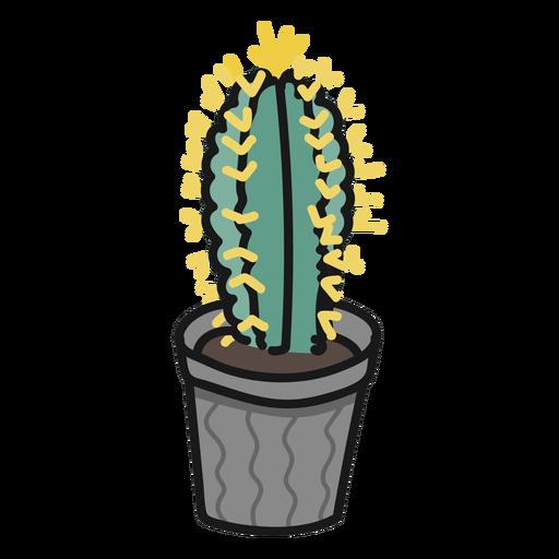 Planta suculenta cactus ilustración trazo Transparent PNG