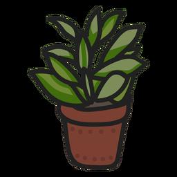 Ilustración de trazo de planta suculenta