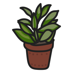Succulent plant stroke illustration