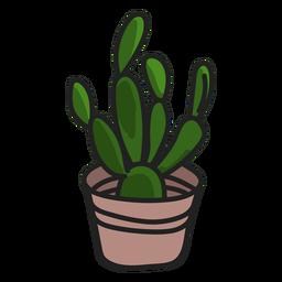 Ilustración de planta verde suculentas